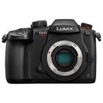 Цифровой фотоаппарат Panasonic Lumix GH5S Body